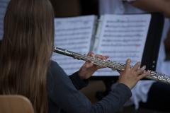Musiker und Bands